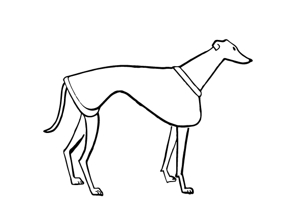 four legged therapy book greyhound